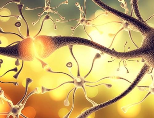 Какви заболявания причинява стресът? Как помага Боуен?
